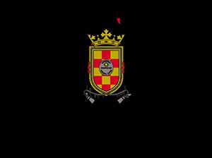 Logo Ucm Máster Universitario En Gestión De Desastres